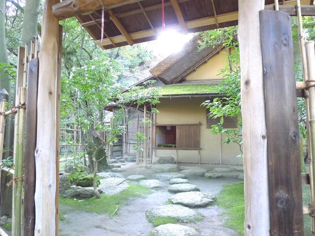 d140114-nozakike09.JPG