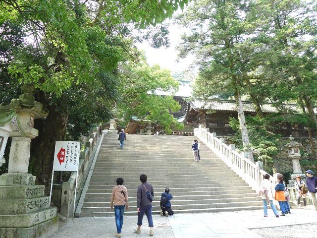 d140117-kagawa10.JPG